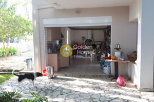 Residence-200-sqm-Artemisio-(Euboea)-460.000-euro | Golden Home Real Estate