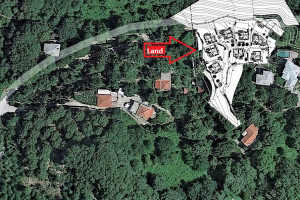 Land-5700-sqm-Mouresi-(Pelio)-220.000-euro | MSM REAL ESTATE