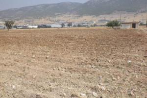 Grundstück--Land-10000-sqm-Aspropyrgos-(Attika-Restliche-Gemeinden)-3.000-euro | Zirogiannis Real estate