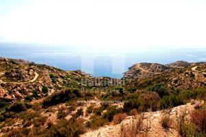 Grundstück--Land-500-sqm-Sithonia-(Chalkidiki)-30.000-euro | Halkidiki Properties Real Estate