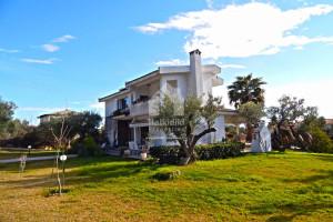 Haus-240-sqm-Kassandra-(Chalkidiki)-400.000-euro | Halkidiki Properties Real Estate