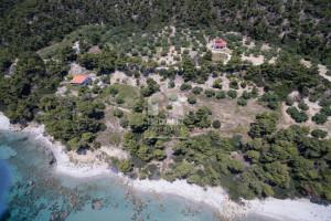 Land-4320-sqm-Kassandra-(Chalkidiki)-700.000-euro | Halkidiki Properties Real Estate