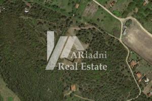 Grundstück--Land-1700-sqm-Chalkidiki-60.000-euro | ARiadni Real Estate