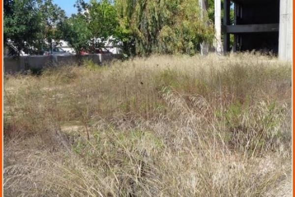 Gewerbe-Immobilie, 370m², Artemida (Loutsa) (Athen Ost), 3.500 €   Zirogiannis Real estate