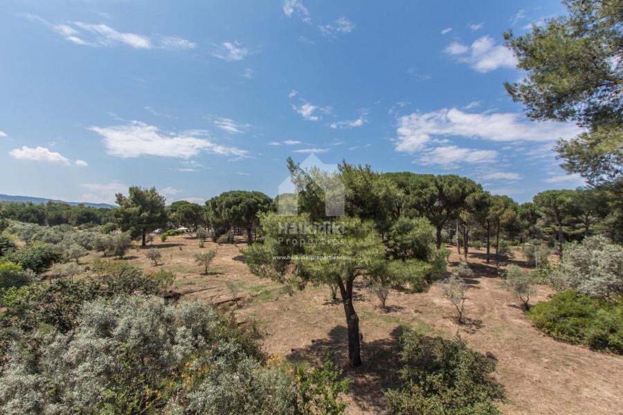 Residence, 120m², Sithonia (Chalkidiki), 120.000 € | Halkidiki Properties Real Estate